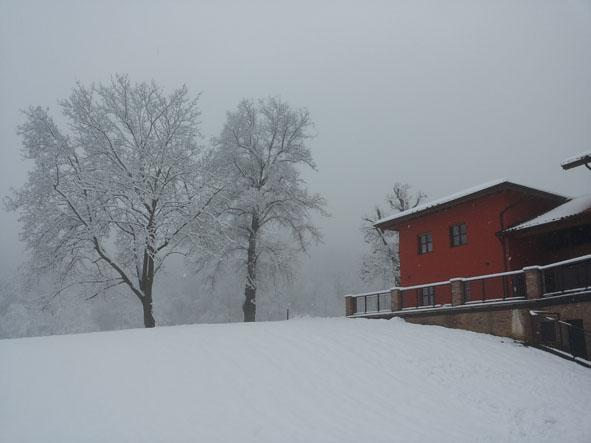Una splendida nevicata ha reso più silenziosa e magica la giornata